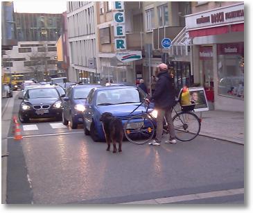Radfahrer und Zebrastreifen