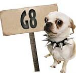 Hund mit G8-Schild